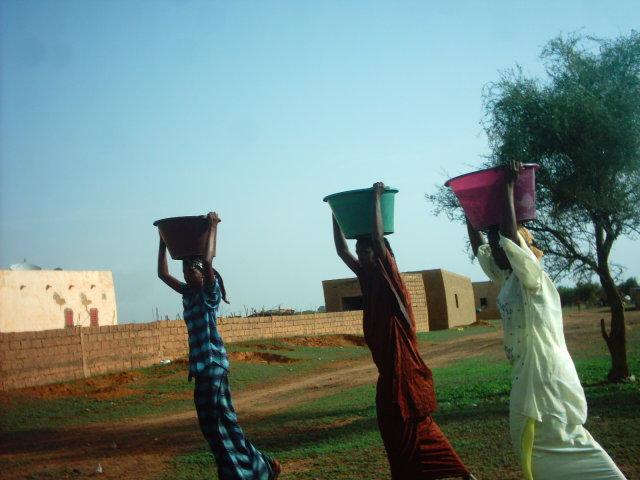 http://grattesoleil.free.fr/bibliotheque/Image/Mauritanie%20-%20Corvee%20Eau.jpg